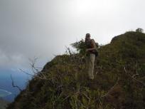 Erica Newman (UC Berkeley), Mt. Fairurani, Mo'orea, Society Islands, 2011