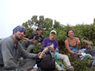 Mike Gil (Florida), Joel Nitta (Harvard), Heather Hillard (CSU Northridge), and Lianne Jacobson (Florida), Mt. Tohi'e'a, Mo'orea, 2013