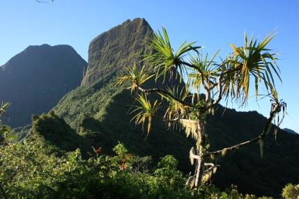 Mt. Tohi'e'a (left) and Mt. Tamarutoofa (right), Mo'orea, Society Islands, 2008