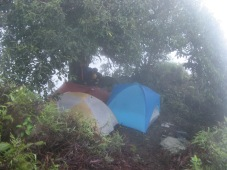 Camp on Mt. Temetiu-Feani, Hiva Oa, Marquesas Islands, 2007