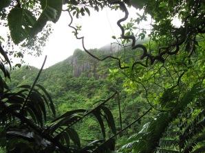 Rarotonga, Cook Islands, 2008