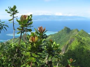 View of Tahiti from Mou'aputa, Mo'orea, Society Islands, 2008