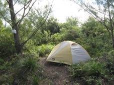 Camp on Te Mēhani Rahi Plateau, Ra'iatea, Society Islands, 2008