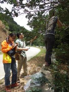 Lianjie (South China Botanical Garden), Shixiao (SCBG), and Erica (UC Berkeley), Bawangling, Hainan, China